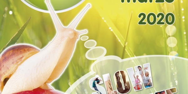 Medesconecto.com presenta sus innovadores productos en la feria Eco Alicante en IFA del 29 de febrero al 1 de marzo
